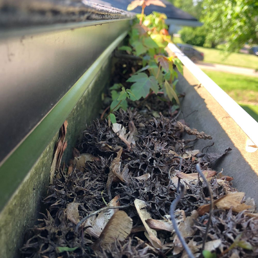 gutter-cleaning-service-B